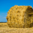 Farm field with hay bales — Stock Photo #12143576
