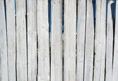 Weathered white wood — Foto Stock
