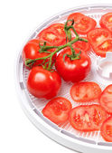 Fresh tomato on food dehydrator tray — Stock Photo