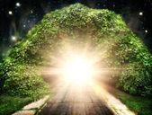 Droga do innego świata, streszczenie tło naturalne — Zdjęcie stockowe