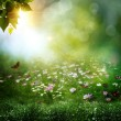 Early morning in the deep forest. Abstract natural backgrounds — Stock Photo