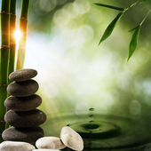 Oriental eco backgrounds with bamboo and water splash — Stock Photo
