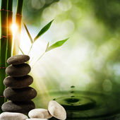 Horizons orientaux eco avec splash de bambou et de l'eau — Photo