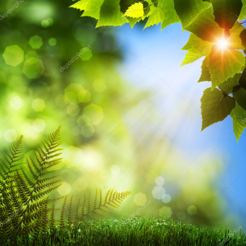 summer natural backgrounds with beauty bokeh � stock photo