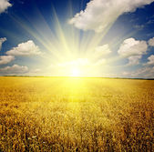 Doğa arka üstünde gökyüzü arka planlar — Stok fotoğraf