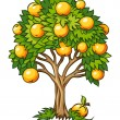 Fruit tree isolated - Stock Vector