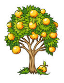 Fruitboom geïsoleerd — Stockvector