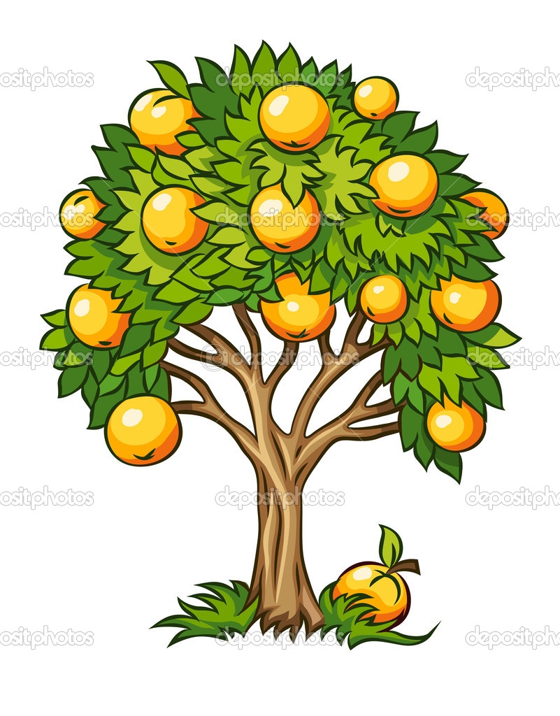 Fruit tree vector illustration isolated on white background  Stock Vector #11922160