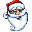 Smiling Santa Claus face - Stock Vector