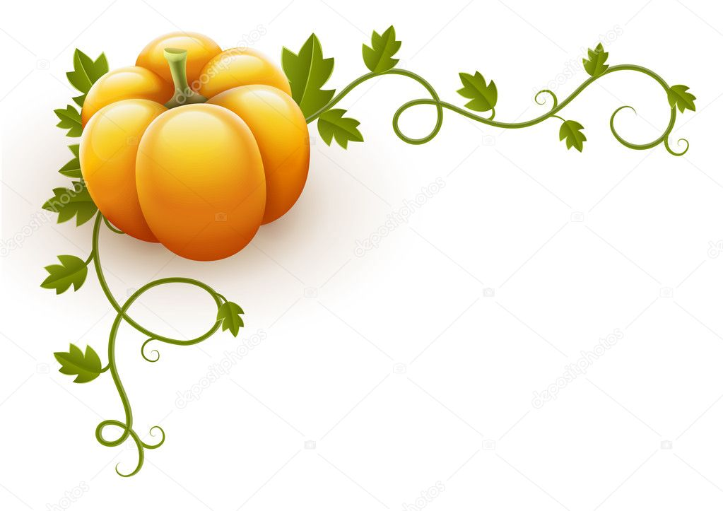 Pumpkin vegetable with green leaves vector illustration isolated on white background EPS10. Gradient mesh used.  Stock Vector #13575962