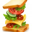 Exploded view of sandwich ingredients - Imagen vectorial