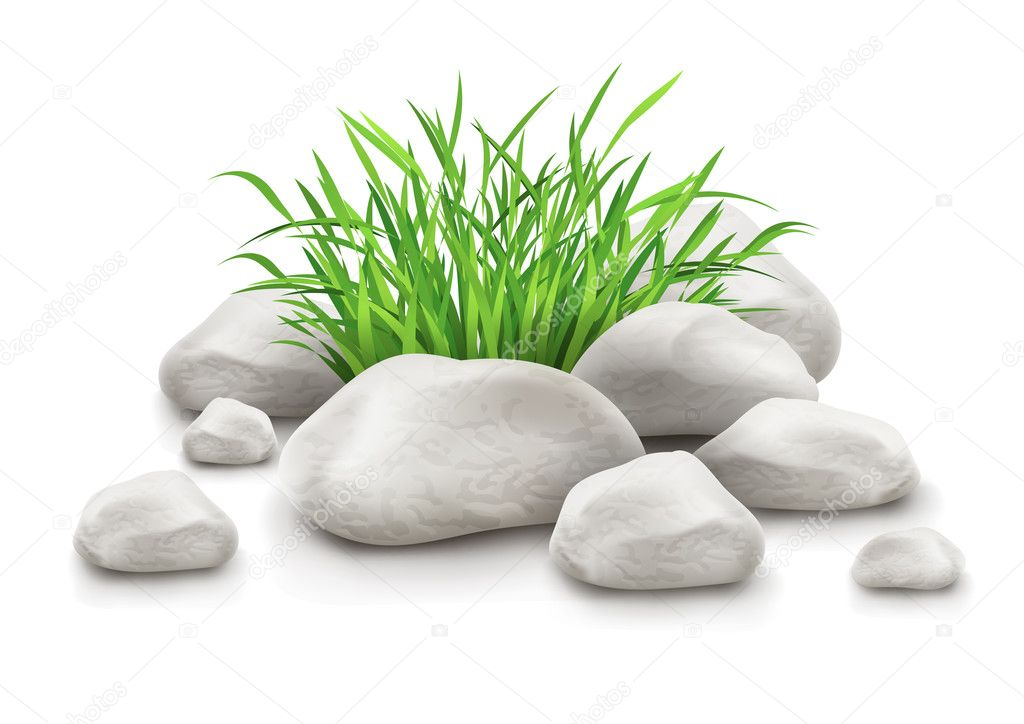 Green grass in stones as landscape design element vector illustration isolated on white background EPS10. Transparent objects used for shadows and lights drawing. Gradient mesh used. — Stock Vector #14603735