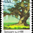 USA - CIRCA 1988 Tree — Stock Photo