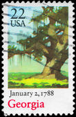 USA - CIRCA 1988 Tree — Stock Photo