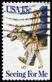 USA - CIRCA 1979 German Shepherd — Stock Photo