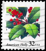 USA - CIRCA 1997 Holly — Stock Photo