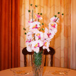 Foto Stock: Orchids in vase