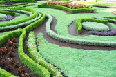 Landscape design — 图库照片