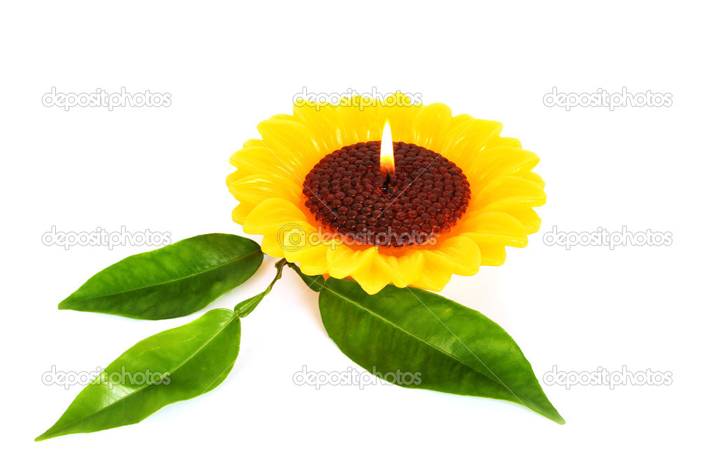 Yellow sunflower candle isolated on white background. — Stock Photo #10740715