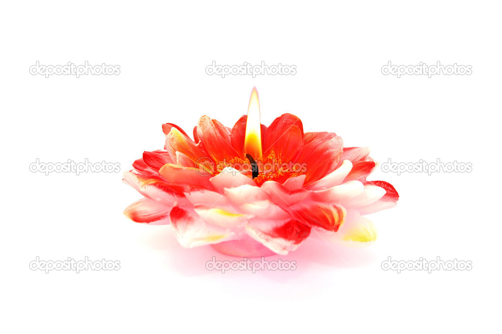 Red flower candle isolated on white background. — Stock Photo #10740724