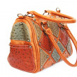 Stylish bag — Foto de stock #10755491