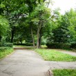 Path in the park — Stock Photo #10786030