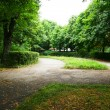 Path in the park — Stock Photo #10786053