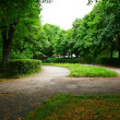 Path in the park — Stock Photo #10786075