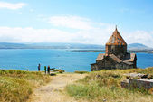 Seagull on lake Sevan — Stock Photo