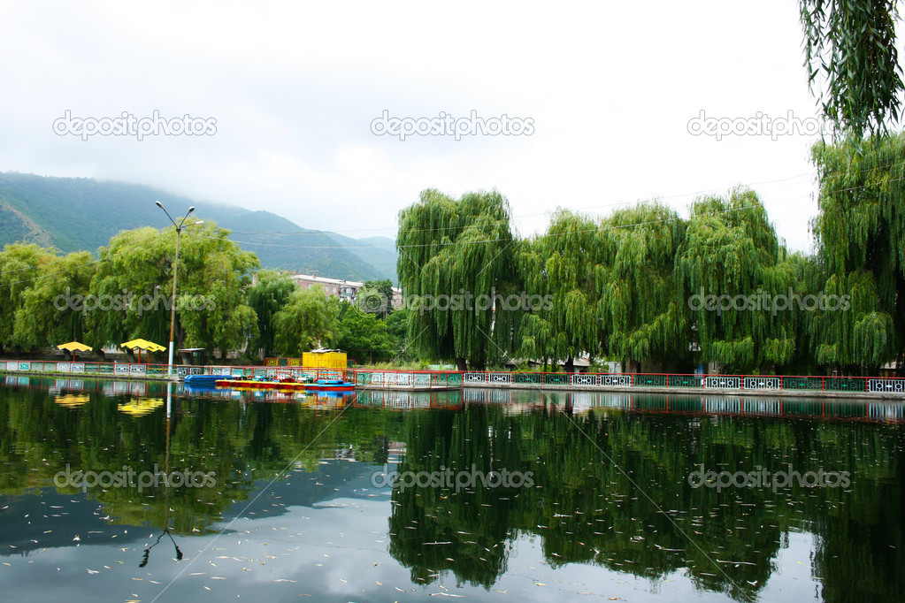 Willow trees at the lake in Vanadzor city, Armenia. — Stock Photo #10786679