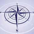 Compass Rose — Stock Vector #11363662