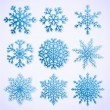 Set of paper snowflakes — Stock Vector
