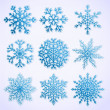Set of paper snowflakes — Stock Vector #12100609