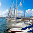 Stock Photo: Sailing yachts in Sardinia