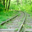 Abandoned railway in forest — Stock Photo