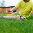 Little boy playing with his cute dog — Stock Photo