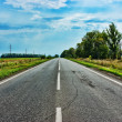 Empty countryside road — Stock Photo