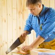 Carpenter cuts the plank - Stock Photo