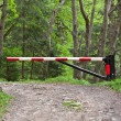 Barrier, blocking road into woods — Stock Photo #11043111
