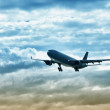 Airliner landing on evening sky — Stock Photo #11097250