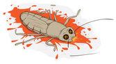 Zgniecione karalucha — Wektor stockowy