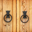 Handles on the old-fashioned wooden door — Stock fotografie