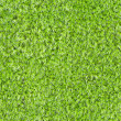 Seamless square texture - green moss — Stock Photo