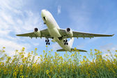 Aircraft takes off over the meadow — Stock Photo