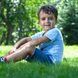 Portrait of cute little boy sitting on the grass — Stock Photo #11545621