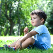 Cute boy with wildflowers sitting on green grass in park — Stock Photo