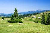 Mountain summer landscape — Stock Photo