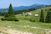 Paesaggio di montagna estate — Foto Stock