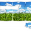 Stock Photo: Green field puzzle
