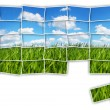 Green field puzzle — Stock Photo
